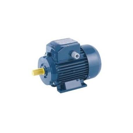 Motor Cemer 2 cv 1500 rpm ie2