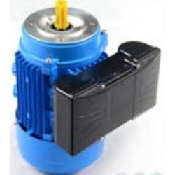 MOTOR CEMER 0.75 CV 3.000 RPM B14 230 V