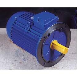 Motor Cemer 1 Cv 1500 RPM B5